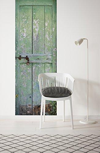 Komar - fleece fotobehang tuindeur - 100 x 280 cm - behang, muur decoratie, deur, huisdeur, poort, vintage, Shabby -156-DV1