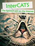 Clip: Intercats - The funniest cats on the Internet