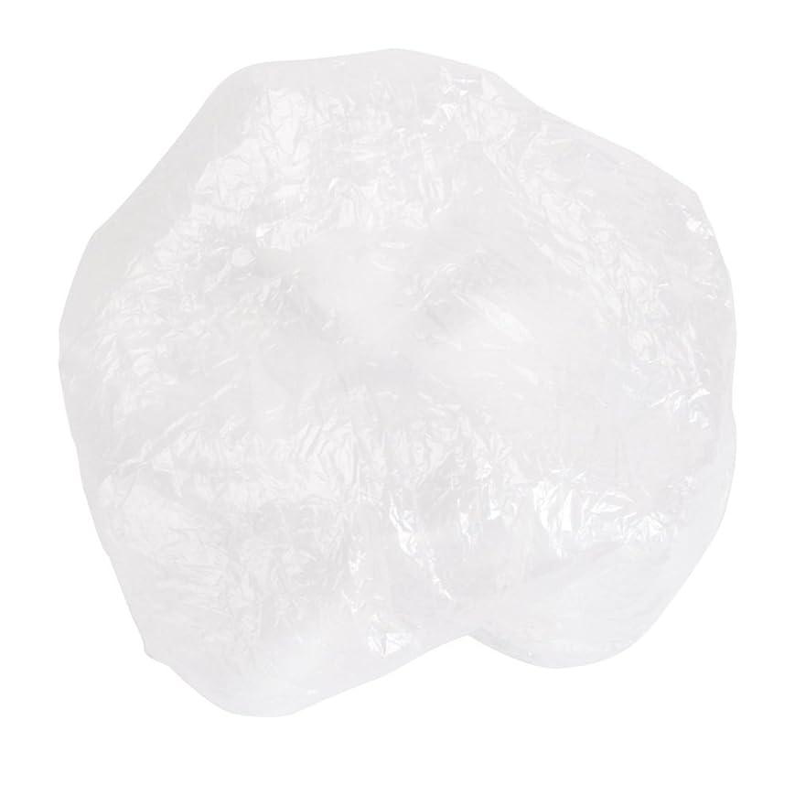 予想外接地抵抗する100枚入 プロワーク ヘアキャップ フリーサイズ スパサロン 使い捨て 透明