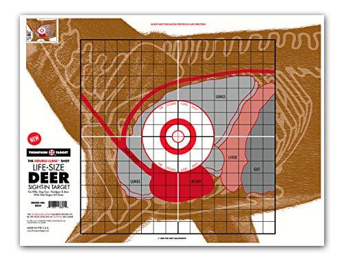 Life Size Deer Vital Organ Sight in - Paper Hunting & Shooting Targets (19