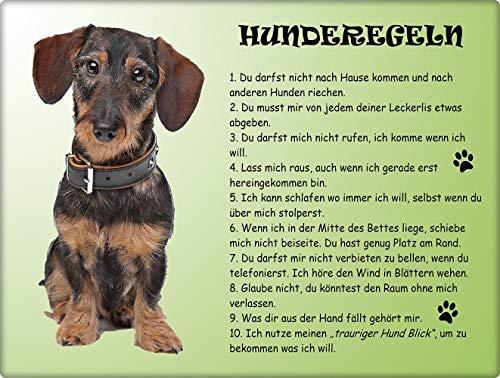 Merchandise for Fans Blechschild/Warnschild/Türschild - Aluminium - 20x30cm - - Hunderegeln - Motiv: Dackel - 01