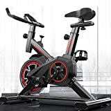 Home Workout Exercise Bike, Multi-Speed Drag Adjustment Ultra-Quiet Sports Bike, Fitness Equipment Weight Loss and Fitness Aerobic Exercise