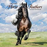 Horse Feathers 2021 Wall Calendar