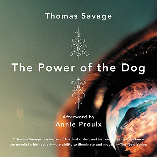 The Power of the Dog cover art