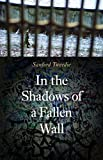 Image of In the Shadows of a Fallen Wall