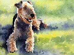 image of an airedale lying in the grass, watercolor art print