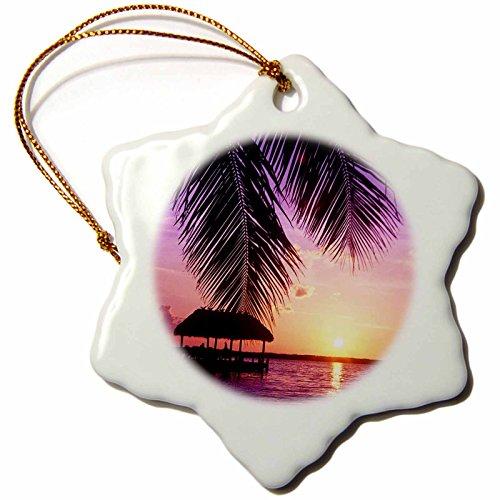 3dRose orn_89161_1 John Pennekamp State Park Key West Florida Greg Johnston Snowflake Decorative Hanging Ornament, Porcelain, 3-Inch