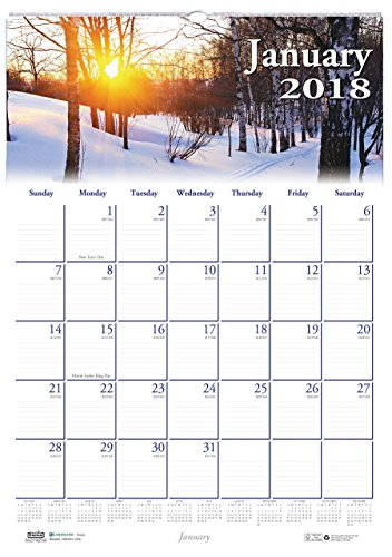 House of Doolittle 2018 Monthly Wall Calendar, Earthscapes Scenic, 12 x 16.5 Inches, January - December (HOD378-18)