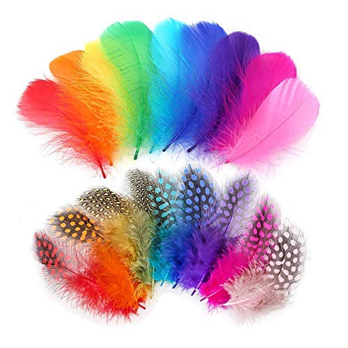 Plumas de colores, Anlising 300 piezas Indias Plumas de decoración Plumas de...