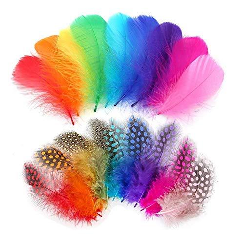 Plumas de colores, Anlising 300 piezas Indias Plumas de decoración Plumas de animación para pendientes de bricolaje, Boda, Atrapasueños, Plumas de tocado, 8~12 cm, en colores mezclados