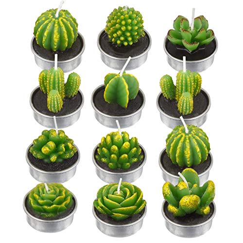 12 Pièces Bougies Cactus Succulentes Bougies Cactus Succulentes À La Main Bougies Succulentes Cactus pour Les Cadeaux De Décoration De Maison De Spa De Mariage De Fête