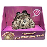 Toad Hollow 'Romeo Motion Activated Whistling Toad Statue 6', Natural Brown Frog