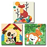 Coolstek Paint by Numbers Kits for Kids Adults Beginner, DIY Acrylic Oil Painting On Canvas ,8 x 8 inch 3 Pack -with Framed
