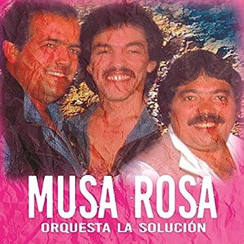 Musa Rosa