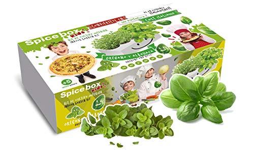 Kit de huerto urbano Spice Box SMAROM