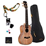 WINZZ 23 Inches Concert Solid Koa Wood Ukulele for Professional Performance with All Accessories