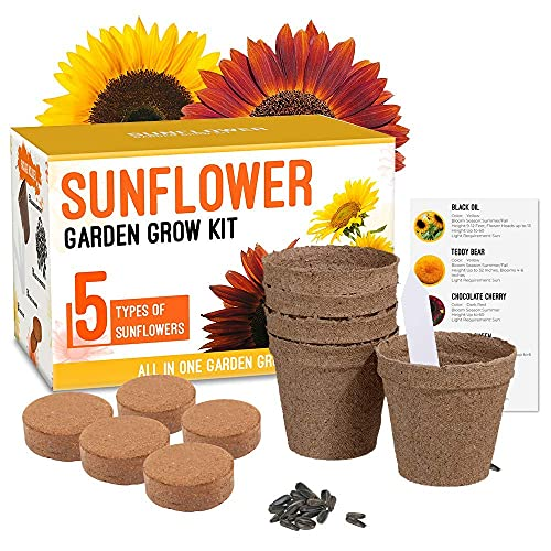 Sunflower Grow Kit - Grow 5 Different Sunflowers - A Complete Beginner Gardeners Gift Growing Set to Start Your Own Indoor Flower...