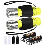 ShineTool wasserdichte Tauchen Taschenlampe, 2 Pack 1000 Lumen LED Tauchlampe 3 Modi USB...