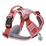Pawaii Dog Harness, No-Pull Pet Harness with Pet ID Tag, No Choke...
