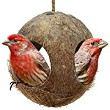 SunGrow Gecko Coconut Bird Hut, ...