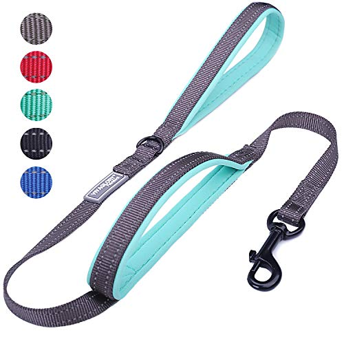 18 best traffic lead leash for 2021