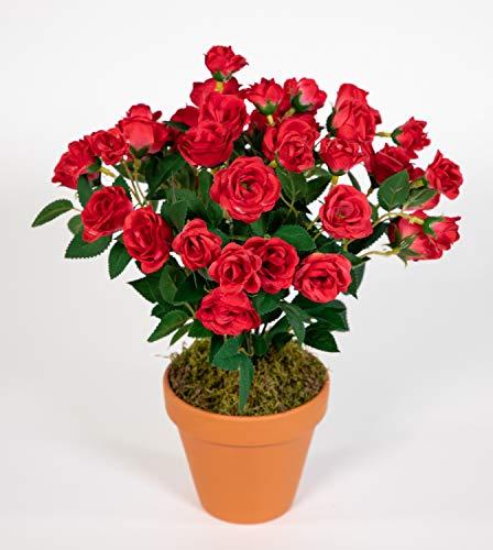Seidenblumen Roß Rosenbusch 30cm rot im Topf ZF Kunstpflanzen Kunstblumen künstliche Blumen Rosenstrauch Rosen