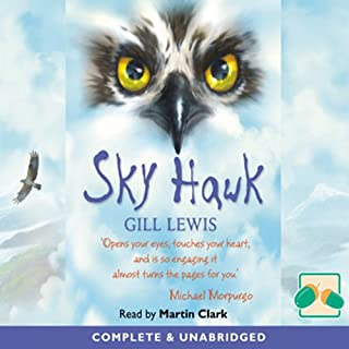 Sky Hawk cover art
