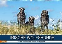 Irische Wolfshunde (Wandkalender 2022 DIN A2 quer): Sanfte Riesen (Monatskalender, 14 Seiten )