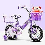 FDSAG Niños Bicicleta Bicicleta De Montaña Acero De Alto Carbono Cuadro con Silencio Destello Auxiliar Rueda, Sólido Anti-Back Asiento para 2-9 Años De Edad Niños Muchachas,20 Inch