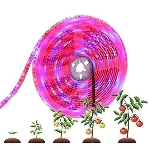 MZSG 5M LED Pflanzen Wachsen Licht, wasserdichte Full Spectrum-Anlage Wachsen Licht SMD 5050 Rot Blau 4: 1, Für Zimmerpflanzen Gewächshaus Aquarium