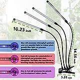 Zoom IMG-2 luci per la crescita delle
