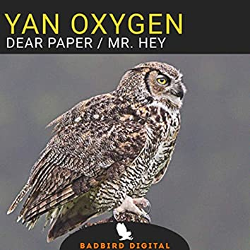 Dear Paper / Mr. Hey