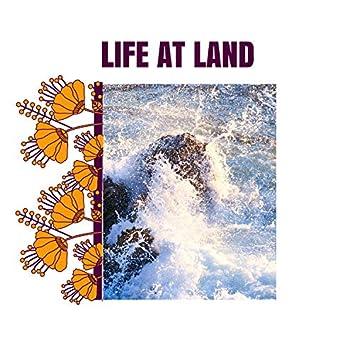 Life at Land