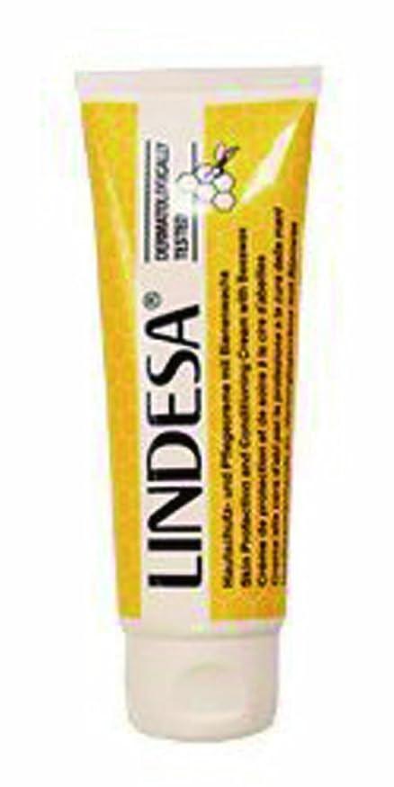 欠乏完璧みすぼらしいサンマリーノコレクション リンデザ ハンド&スキンクリーム 75ml