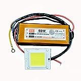 GLW® Wasserdichte 50W LED-Treiber-Stromversorgung + 50W kalte weiß...