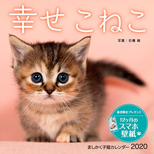 【Amazon.co.jp限定】ましかく子猫カレンダー 幸せこねこ(特典:PC・スマホ用壁紙画像-こねこ データ配信) (インプレスカレンダー2020)