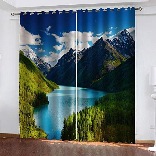 "Grommet Thermal Insulated Room Darkening Curtains Blackout Curtains for Bedroom Insulated Heavy Weight Textured Rich 2 Panels 140"" W x 160"" Hcm Landscape"