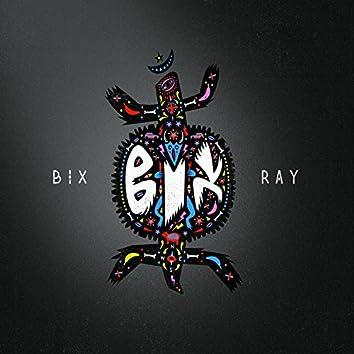 BIX RAY