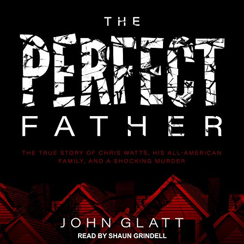 The Perfect Father audiobook cover art