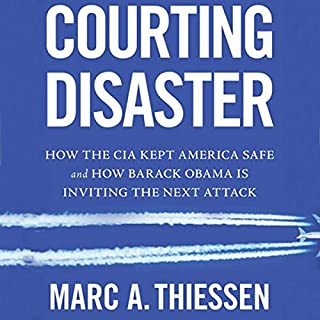 Courting Disaster audiobook cover art