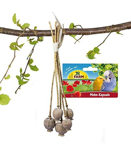 JR Farm Mohn-Kapseln für alle Ziervögel