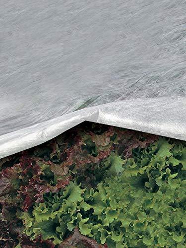 Bâche pour les plantes de protection contre le froid en tissu non-tissé de 30 grammes/m² largeur 400 cm