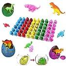 "Totem World Dinosaur Grow Eggs 1.25"", 60 Pack Assorted Color Hatch Eggs for Easter Egg Hunt"