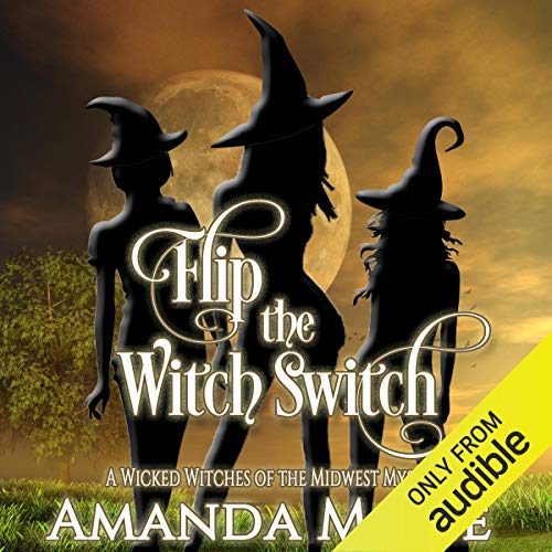 Flip the Witch Switch audiobook cover art