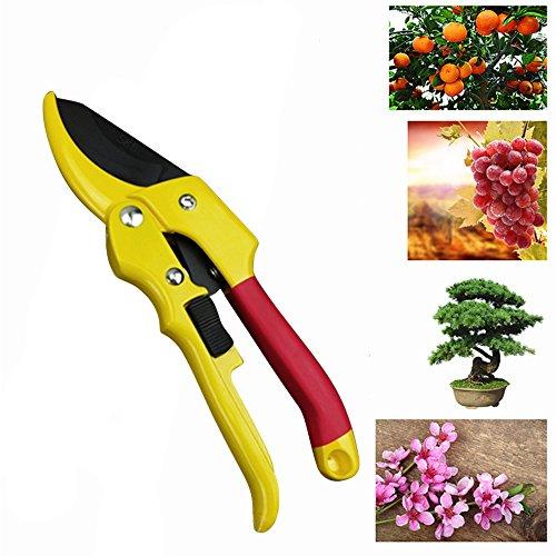 MIFXIN Sécateur Jardin en Acier Japonais SK5 - Ciseaux de Jardin Ergonomique avec Poignée Tournante pour 30% Moins d'effort, Lame 65mm (Jaune)
