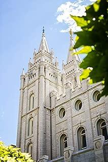 Temple Building Salt Lake City Holy LDS Church Vivid Imagery Laminated Poster Print 24 x 36