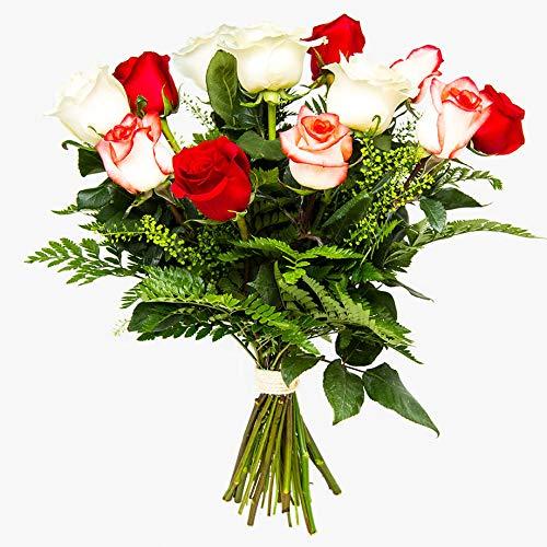 Ramos de 12 rosas naturales a domicilio variado Túnez - Flores frescas - Envío a domicilio 24h GRATIS - Tarjeta dedicatoria incluida - Caja especial para ramos de flores naturales.
