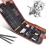 29 Pieces Drawing Pencils Set for Beginners,Kids or Any Aspiring Artist,GOLP Perfect for Sketch Pencils Kit,Sketching School Supplies,Art Pencils,Graphite Charcoal Pencil,Erasers and Paper Pens