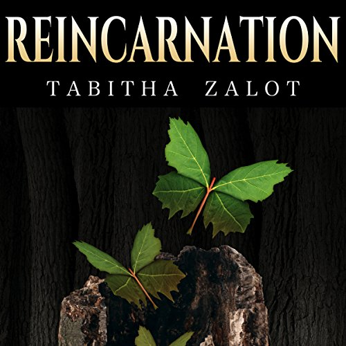 Reincarnation: Afterlife audiobook cover art