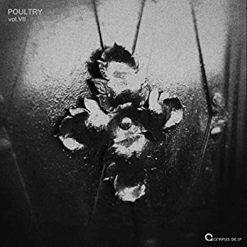 Poultry 7